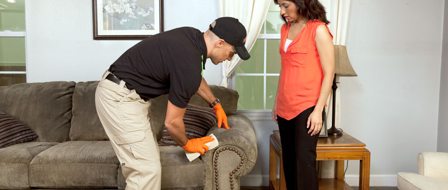 Victorville, CA carpet upholstery cleaning